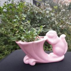 Cameron Clay Pink Squirrel and Cornucopia Vintage Planter
