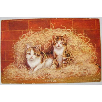A Frolic Vintage Cat Postcard - Pair of Cat Kittens In Wood Shavings