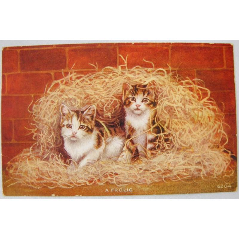 A Frolic Vintage Cat Postcard - Kittens In Wood Shavings